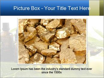 0000075786 PowerPoint Templates - Slide 15
