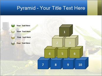 0000075786 PowerPoint Templates - Slide 31