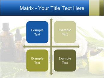 0000075786 PowerPoint Templates - Slide 37