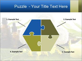 0000075786 PowerPoint Templates - Slide 40