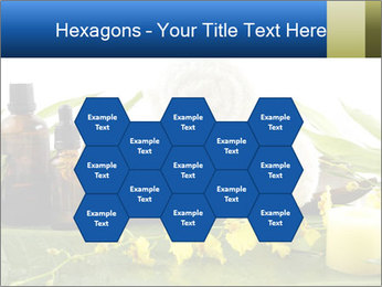 0000075786 PowerPoint Templates - Slide 44