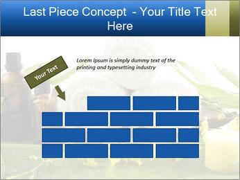0000075786 PowerPoint Templates - Slide 46