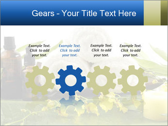 0000075786 PowerPoint Templates - Slide 48