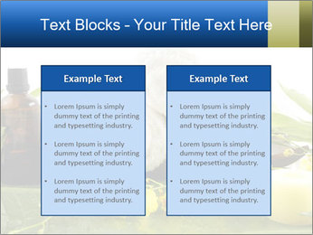 0000075786 PowerPoint Templates - Slide 57