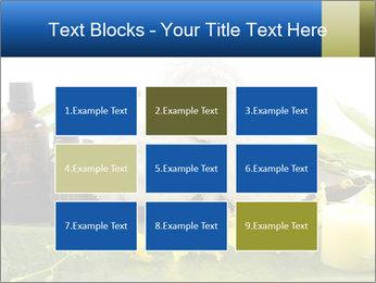 0000075786 PowerPoint Templates - Slide 68