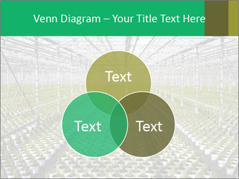 0000075787 PowerPoint Templates - Slide 33