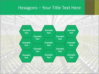 0000075787 PowerPoint Templates - Slide 44