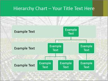 0000075787 PowerPoint Template - Slide 67
