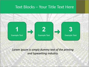 0000075787 PowerPoint Template - Slide 71