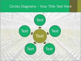 0000075787 PowerPoint Templates - Slide 78