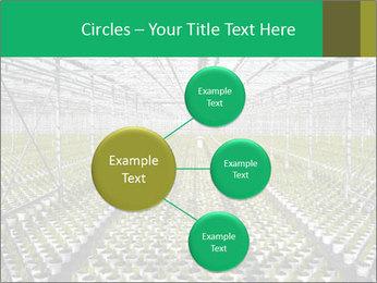 0000075787 PowerPoint Templates - Slide 79