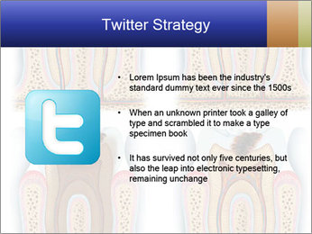 0000075801 PowerPoint Template - Slide 9