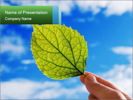 0000075806 PowerPoint Template