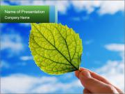 0000075806 PowerPoint Templates