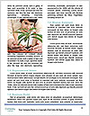 0000075810 Word Templates - Page 4