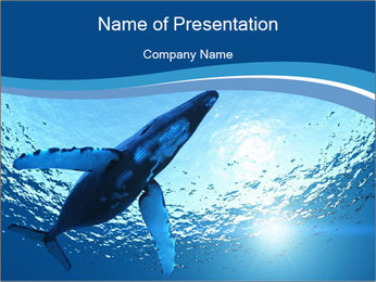 0000075818 PowerPoint Template