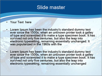 0000075818 PowerPoint Templates - Slide 2