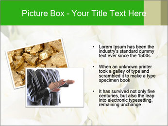 0000075824 PowerPoint Template - Slide 20