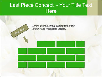 0000075824 PowerPoint Template - Slide 46