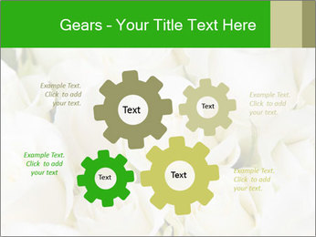 0000075824 PowerPoint Template - Slide 47