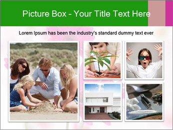 0000075835 PowerPoint Templates - Slide 19