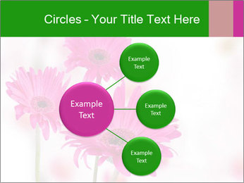 0000075835 PowerPoint Templates - Slide 79