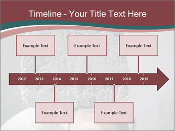 0000075838 PowerPoint Template - Slide 28