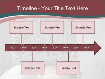 0000075838 PowerPoint Templates - Slide 28