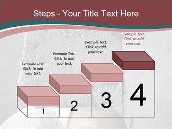 0000075838 PowerPoint Templates - Slide 64