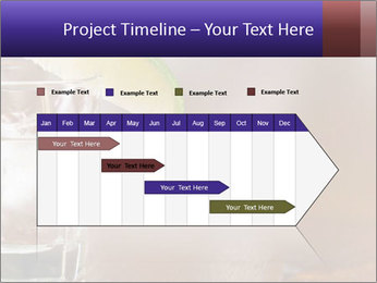 0000075843 PowerPoint Templates - Slide 25