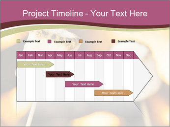 0000075848 PowerPoint Template - Slide 25