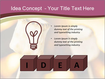 0000075848 PowerPoint Template - Slide 80