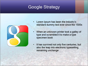 0000075863 PowerPoint Template - Slide 10
