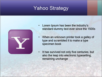 0000075863 PowerPoint Template - Slide 11