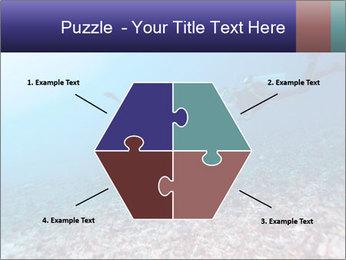 0000075863 PowerPoint Template - Slide 40