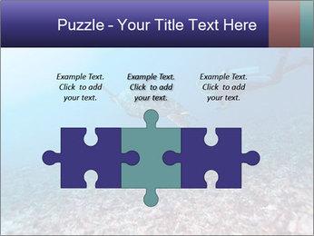 0000075863 PowerPoint Template - Slide 42
