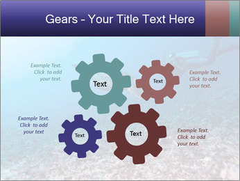 0000075863 PowerPoint Template - Slide 47