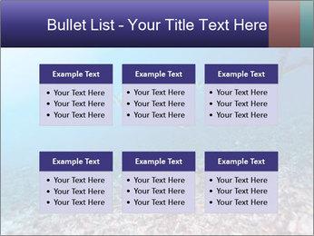 0000075863 PowerPoint Template - Slide 56