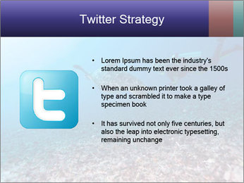 0000075863 PowerPoint Template - Slide 9