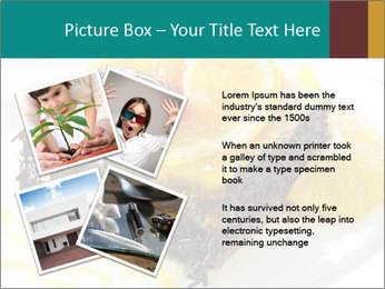 0000075871 PowerPoint Template - Slide 23