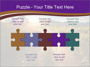 0000075872 PowerPoint Templates - Slide 41