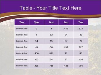 0000075872 PowerPoint Templates - Slide 55