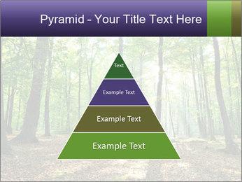 0000075890 PowerPoint Template - Slide 30