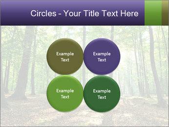 0000075890 PowerPoint Template - Slide 38