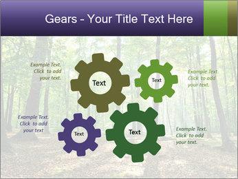 0000075890 PowerPoint Template - Slide 47