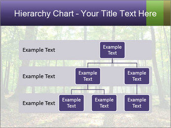 0000075890 PowerPoint Template - Slide 67