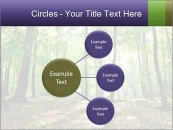 0000075890 PowerPoint Template - Slide 79