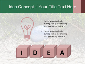 0000075899 PowerPoint Template - Slide 80