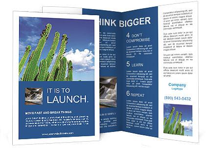 0000075903 Brochure Template