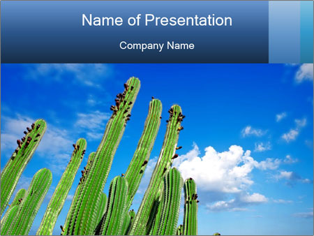 0000075903 PowerPoint Template